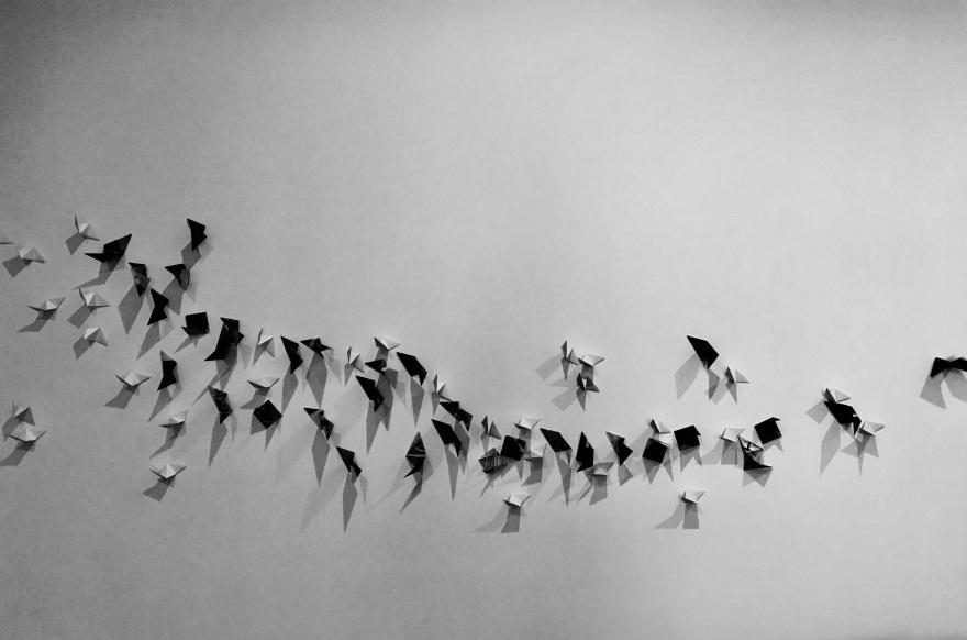 Kusudama Migration. ( Installation is a work in progress )