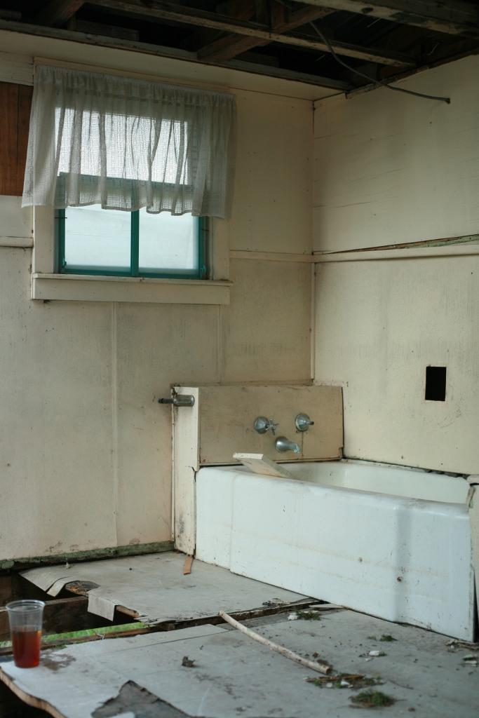 Historic Home Renovation.